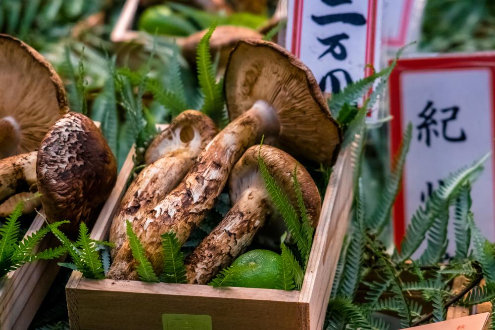 Matsutake Mushroom price