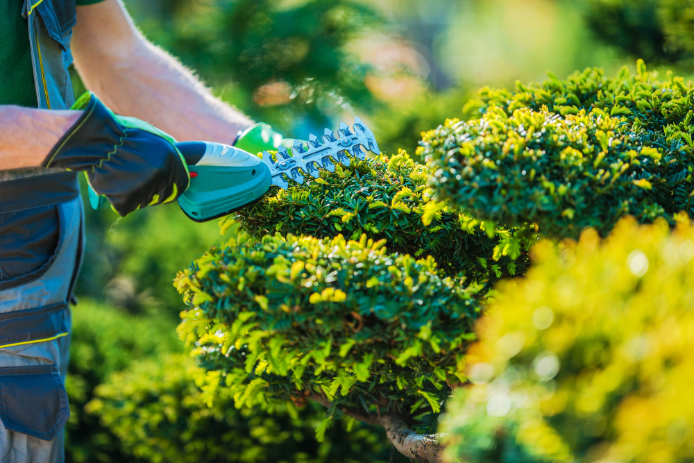 landscaping business startup costs