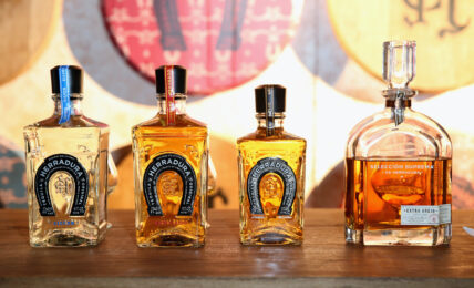 the 17 most expensive tequilas in the world