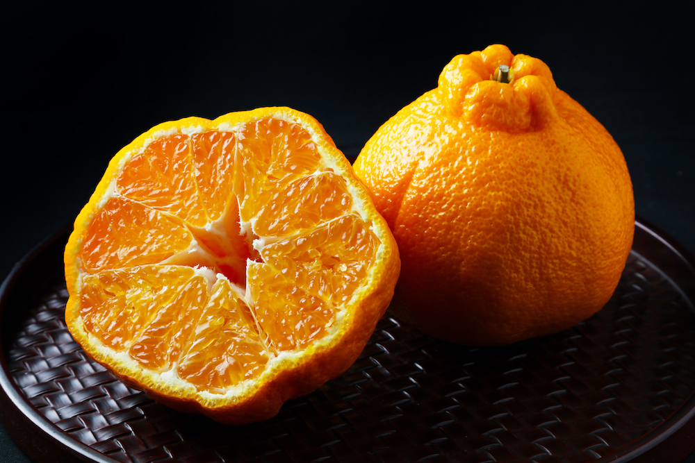 Dekopon Citrus price