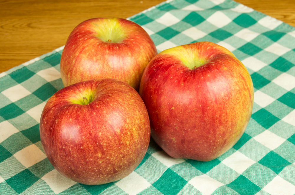 Sekai-ichi Apple price