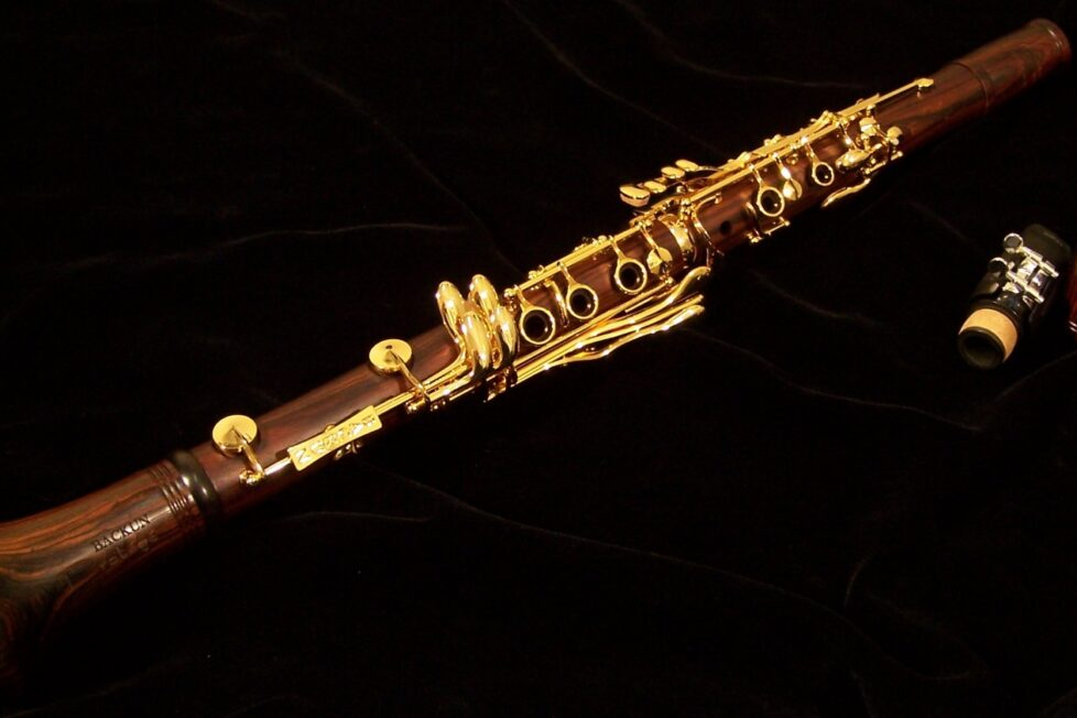 Backun MoBa A Clarinet Cocobolo Gold Keys price, 10 most expensive clarinets in the world
