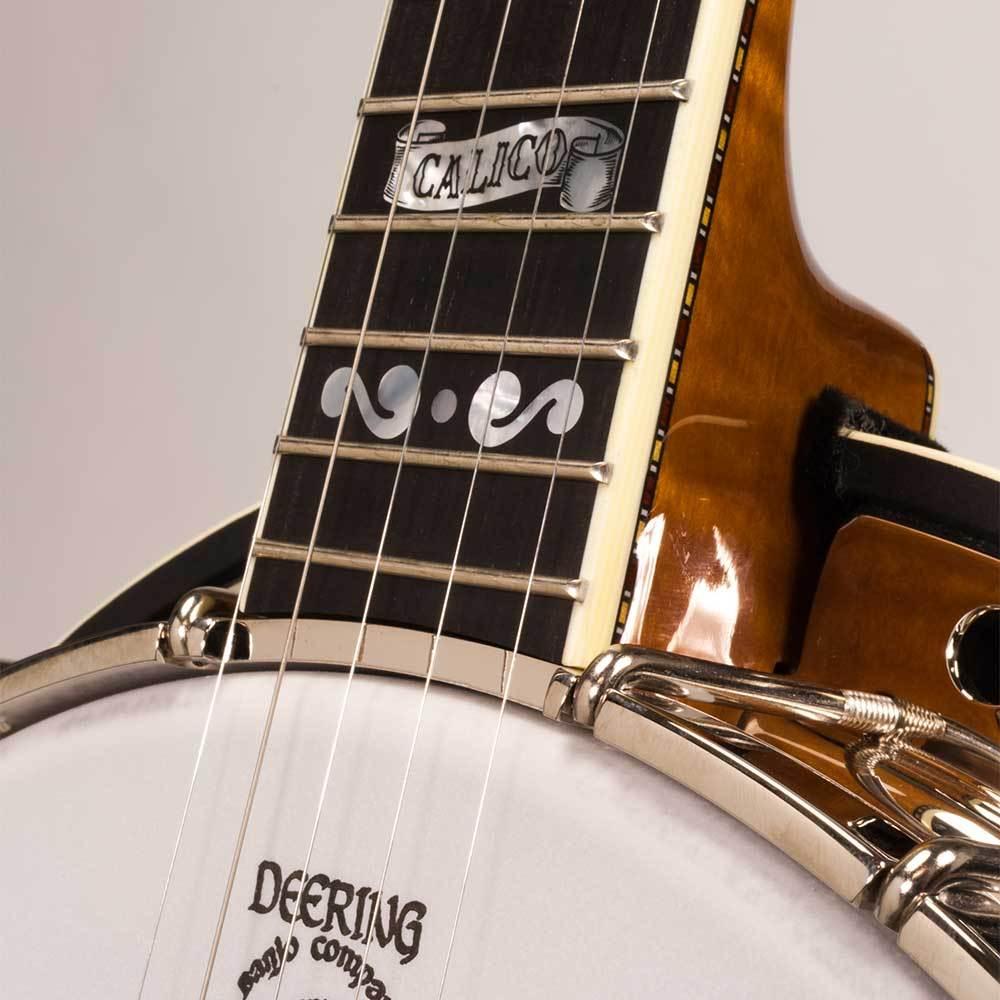 Deering Calico Banjo price, expensive banjos