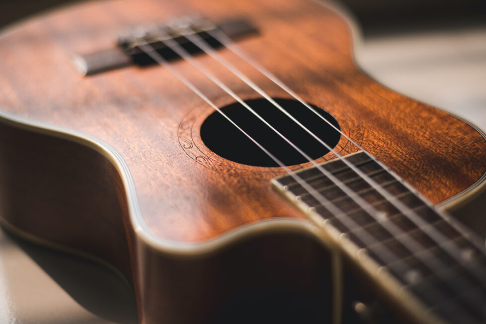 most expensive ukuleles