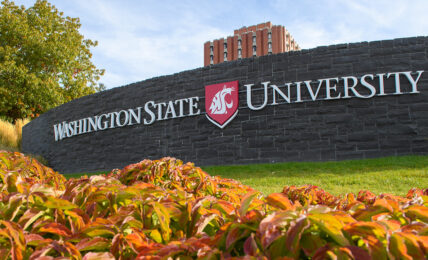 Washington State University business school