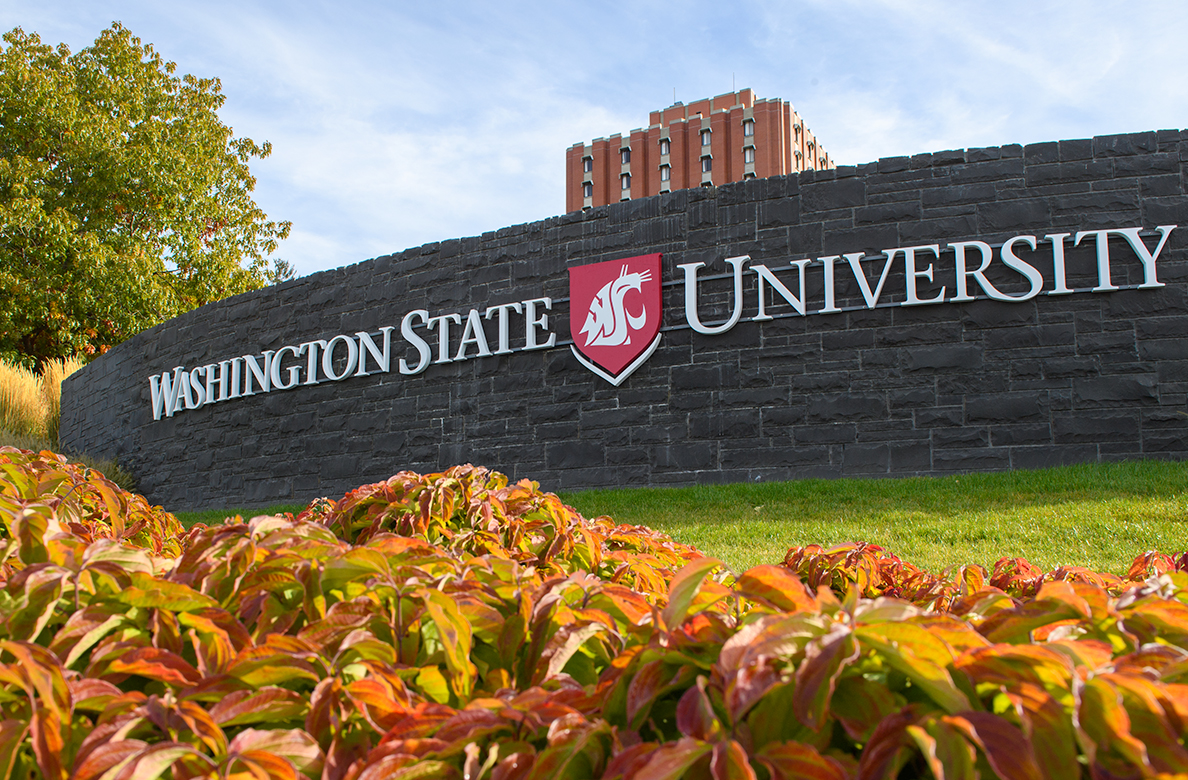 Washington State University business school, 15 best business schools in Washington