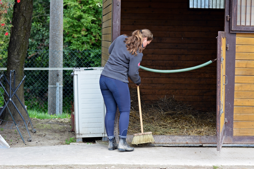 horse stable cleaning business