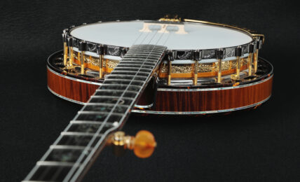 most expensive banjos in the world