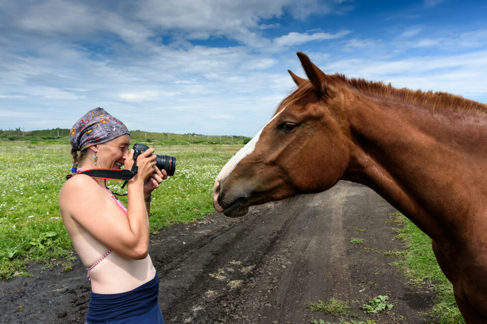 15 Ways To Make Money With Horses