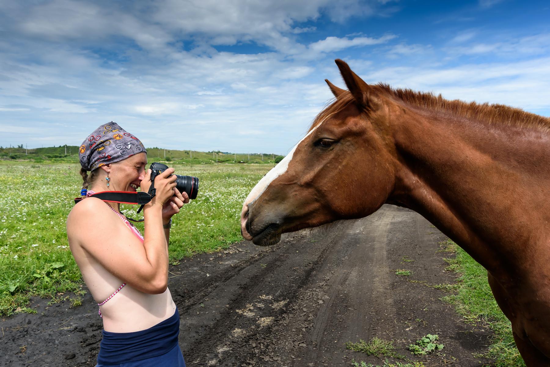 15 Ways To Make Money With Horses