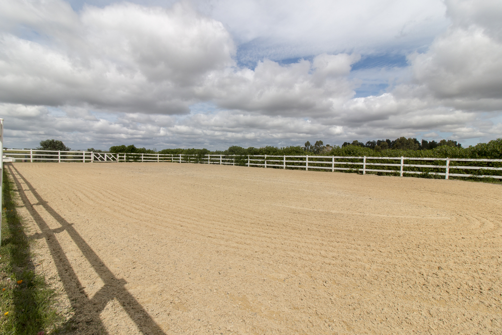 renting out your horse arena