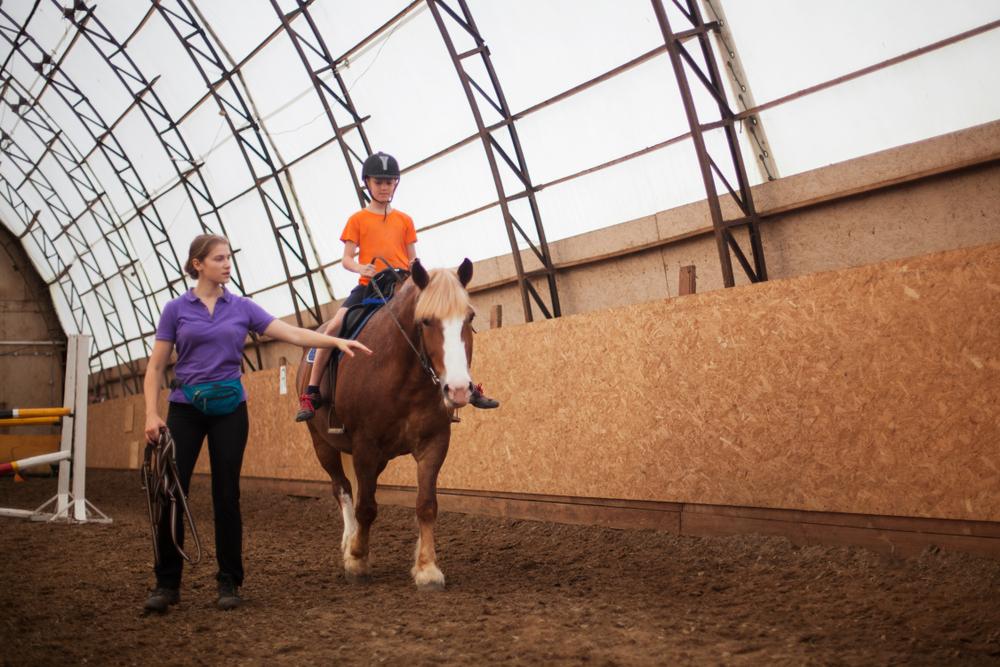 horse business ideas