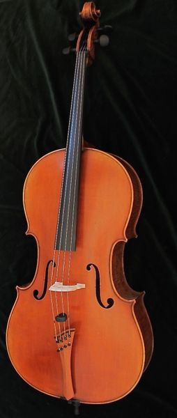 Patrizius Stradivarius Cello price