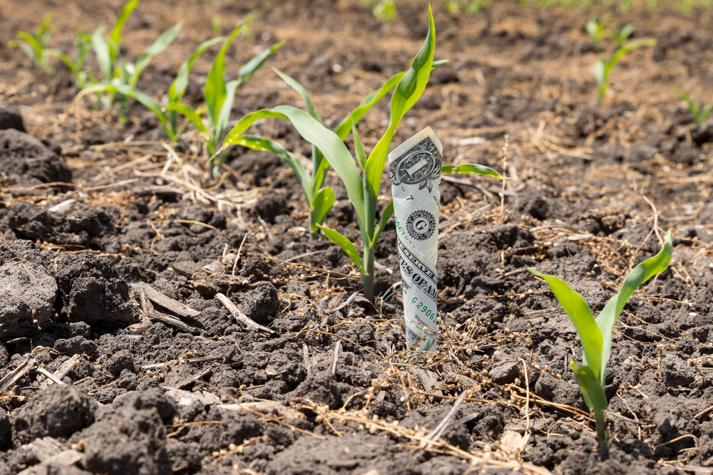 how much money can a farmer or rancher make?